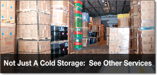 MEDINA COLD STORAGE CO
